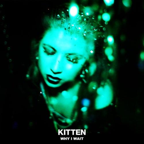 Why I Wait by Kitten