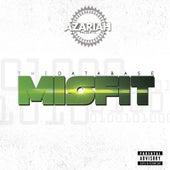 Azariah Presents: The Database Misfit by Azariah