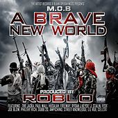 A Brave New World by Roblo