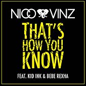 That's How You Know (feat. Kid Ink & Bebe Rexha) by Nico & Vinz