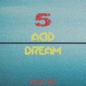 Acid Dream, Vol. 5 by Various Artists
