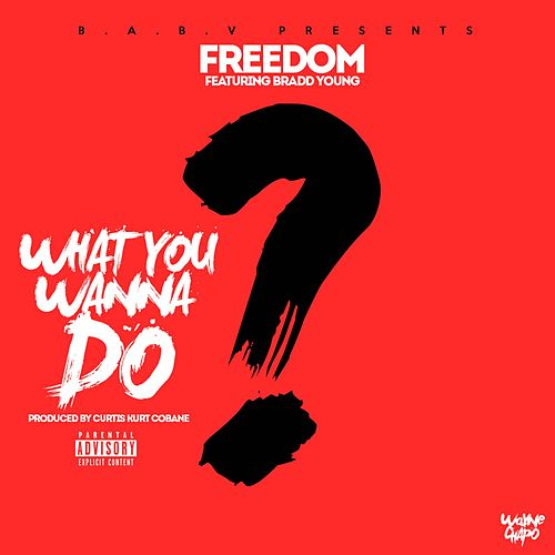 What You Wanna Do (feat. Bradd Young) by Freedom (5)