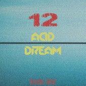 Acid Dream, Vol. 12 by Various Artists