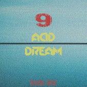 Acid Dream, Vol. 9 by Various Artists