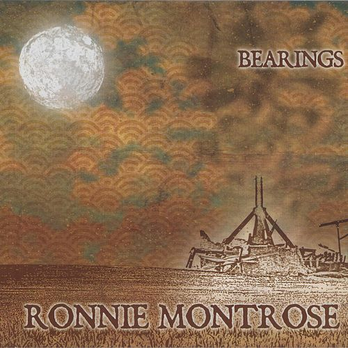 Bearings by Ronnie Montrose