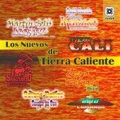 Los Nuevos de Tierra Caliente by Various Artists