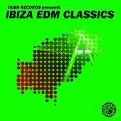 Ibiza EDM Classics von Various Artists