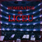 Homenatge al Liceu by Orquesta Sinfónica del Gran Teatre del Liceu