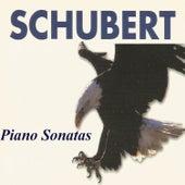 Schubert - Piano Sonatas by Heino Schwarting