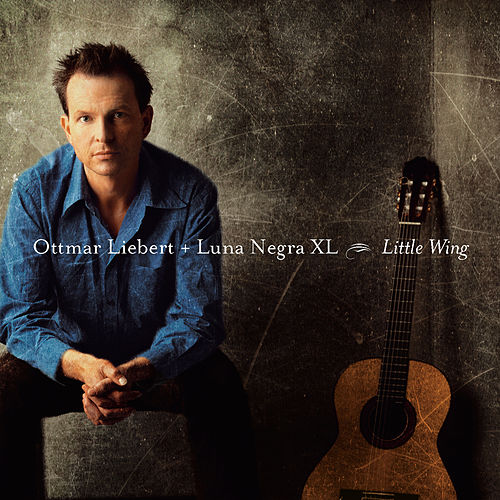 Little Wing by Ottmar Liebert