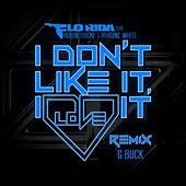 I Don't Like It, I Love It (G-Buck Remix) by Flo Rida