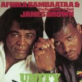 Unity by Afrika Bambaataa