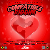 Compatible Riddim by Various Artists