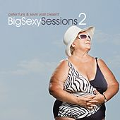 Big Sexy Sessions, Vol. 2 by Various Artists