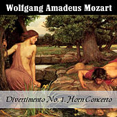 Mozart: Divertimento No. 1, Horn Concerto by Various Artists