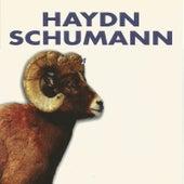 Haydn - Schumann by SWF Symphony Orchestra Baden-Baden