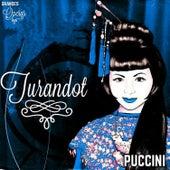 Turandot, Puccini, Grandes Óperas by Various Artists