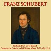 Franz Schubert Sinfonía No. 5 y Cuarteto de Cuerda en Mi Bemol by The Ensemble Villa Musica