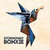 Bonxie by Stornoway