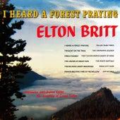 I Heard a Forest Praying by Elton Britt