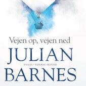 Vejen op, vejen ned by Julian Barnes