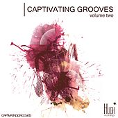 Captivating Grooves, Vol. 2 von Various Artists