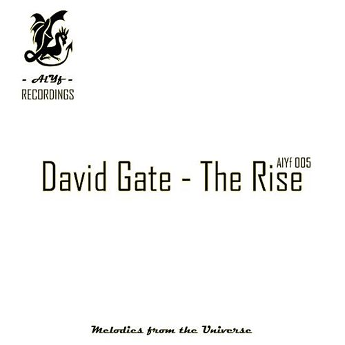 The Rise by David Gate