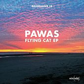 Flying Cat by Pawas
