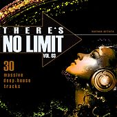 There's No Limit, Vol. 3 (30 Massive Deep-House Tracks) by Various Artists