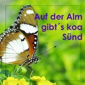 Auf Der Alm Gibt´s Koa Sünd - Echte Volksmusik - Bayern - Bavaria by Zharivari