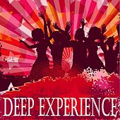Deep Experience by Various Artists