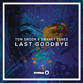 Last Goodbye by Swanky Tunes