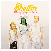 Shelter - Single by Vaski