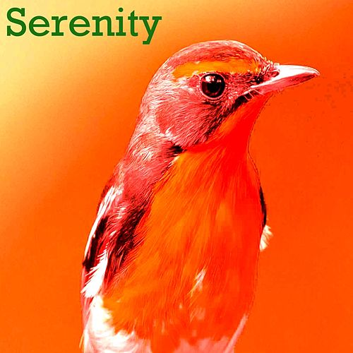 Serenity by Nightingale