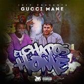 El Chapos Home by Gucci Mane