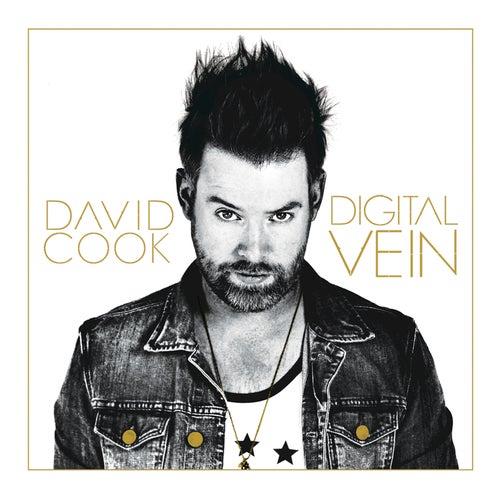 Digital Vein von David Cook