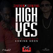 High Yes (feat. Zj Liquid) - Single by Sean Paul