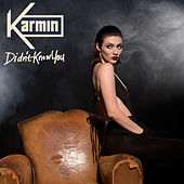 Didn't Know You by Karmin