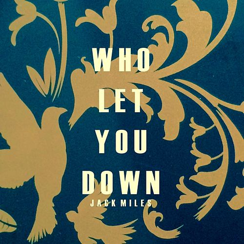Who Let You Down by Jack Miles