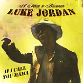 A Tribute to Bluesman Luke Jordan by Various Artists