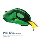 Real Ibiza, Vol. 8 by Various Artists