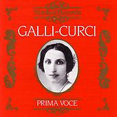 Prima Voce: Galli-Curci by Various Artists