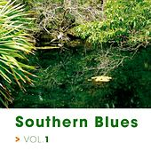 Southern Blues by Various Artists