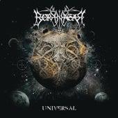 Universal by Borknagar
