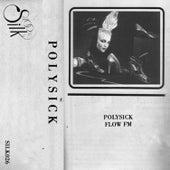 Flow FM by Polysick