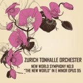 Dvořák: Symphony No. 9 in E Minor, Op. 95