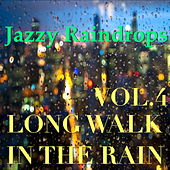 Jazzy Raindrops: Long Walk In The Rain, Vol.4 by Various Artists