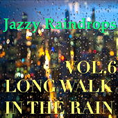 Jazzy Raindrops: Long Walk In The Rain, Vol.6 by Various Artists