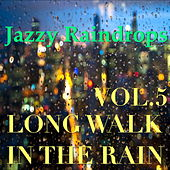 Jazzy Raindrops: Long Walk In The Rain, Vol.5 by Various Artists