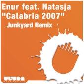 Calabria 2007 (Junkyard Remix) by Enur